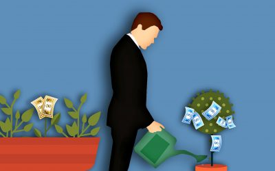 New feature: Extra working capital for financing cashflow