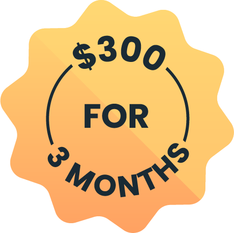 Get 3 Months For $300